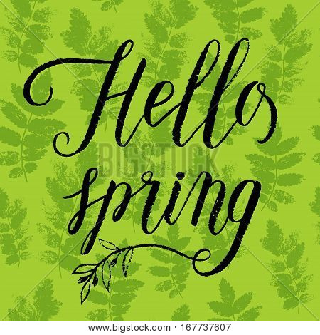Hello Spring Greeting Card, Poster For Easter. Vector Background With Hand Lettering, Green Ash Leav