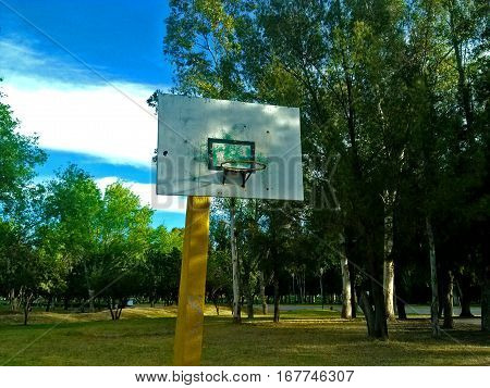 Basketball court with trees and grass at the back