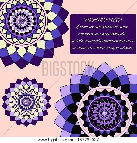 beautiful unusual pattern of purple and lilac, mandala, the layout with text, vector illustration
