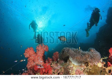 Scuba dive coral reef. Sea ocean underwater and scuba divers