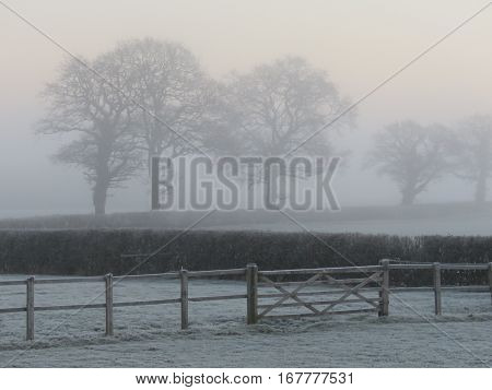 frosty foggy morning in the English country side