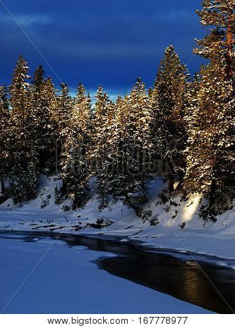 The Deschutes River in Central Oregon in the evening mostly frozen over and covered in snow with tall ponderosa pine trees on the banks illuminated by the setting sun.