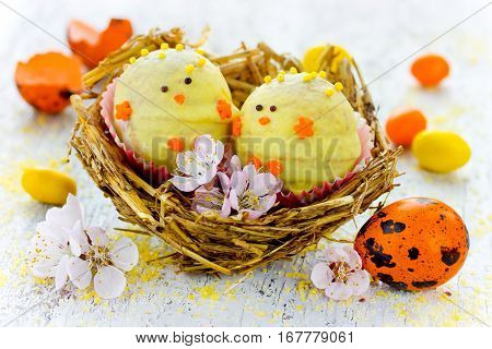 Easter chicken candy cake pops in nest - funny idea for Easter treat for kids