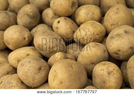 Potatoes pile on display. Raw potato background. Vegetables on market's display. Pile of ripe garden vegetables in box. Golden brown potato - ingredient for french fries or chips. Autumn harvesting
