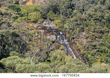 Blue Mountains Landscape Of Eucalyptus Forest And Wentworth Falls