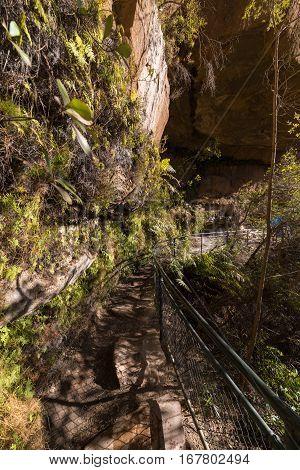 Hiking Trail In Blue Mountain, Australia