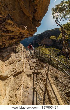 Hiking in Blue Mountain Australia. Woman walking on Wentworth Falls hiking track