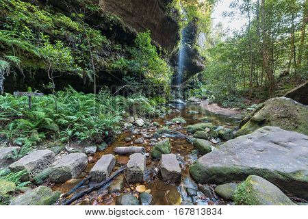 Grand Canyon Walking Track in Blue Mountains. Hiking path in tropical rainforest river crossing with waterfall view