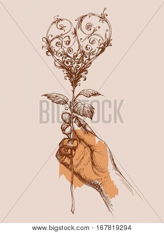 Offering love concept, hand giving a rose in shape of a heart. Valentine's day card, wedding invitation