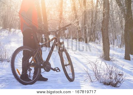 Mountain Biker with his Bike on the Snowy Trail in the Beautiful Winter Forest Lit by the Sun