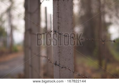 rusty steel barbed wire lines close up on a blurred natural background selective focus