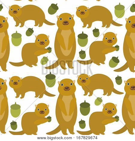 Seamless pattern Set of funny Gopher ground squirrel isolated with acorn on white background. Vector illustration