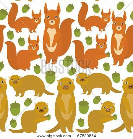 Seamless pattern Set of funny red squirrels with Gopher ground squirrel fluffy tail with acorn isolated on white background. Vector illustration
