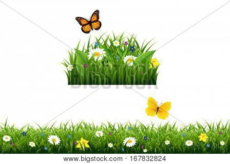 Fowers Border With Gradient Mesh, Vector Illustration