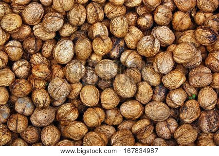 Natural fresh healthy  food background brown  walnuts