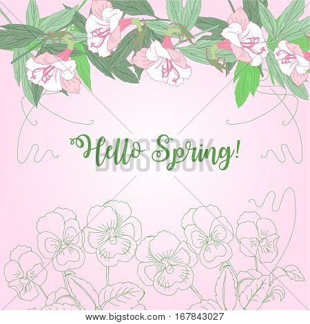 Spring background floral with pink pansies. Vector Illustration
