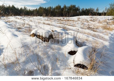 wooden logs under snow on meadow in winter forest