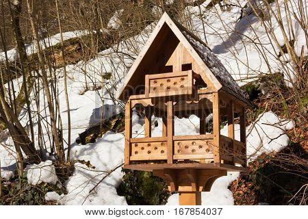 Bird feeders in the winter garden. Animal feeders.