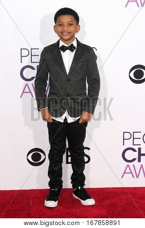 LOS ANGELES - JAN 18:  Lonnie Chavis at the People's Choice Awards 2017 at Microsoft Theater on January 18, 2017 in Los Angeles, CA