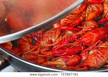 Crayfish in the pot and boiling water preparation