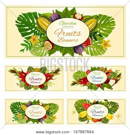 Fruit banners set of vector exotic fruits durian and mangosteen, tropical fresh mango, carambola and dragon fruit or pitaya, grapefruit or red orange, guava and juicy longan with figs, ripe rambutan, passion fruit maracuya and feijoa