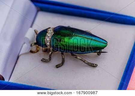Brooch jewelry from metallic wood boring beetle