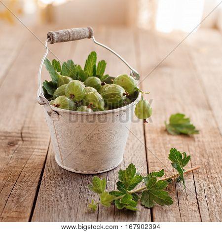 fresh green tasty gooseberry on vintage wooden background