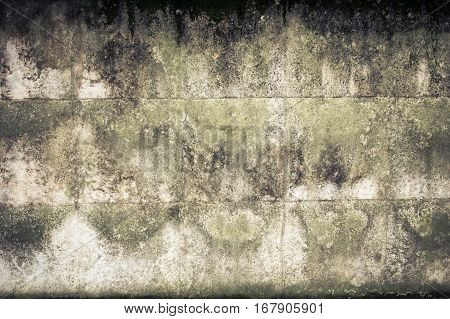 Old dirty concrete wall. Abandonment concept. Gray black and green background