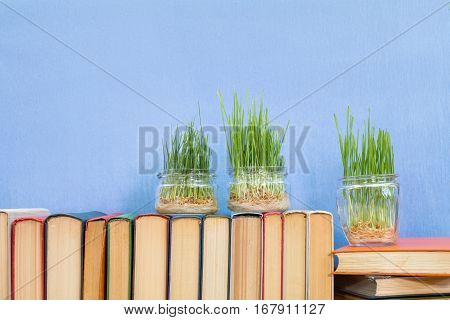 Germinated Wheat In Glass Jar On Books