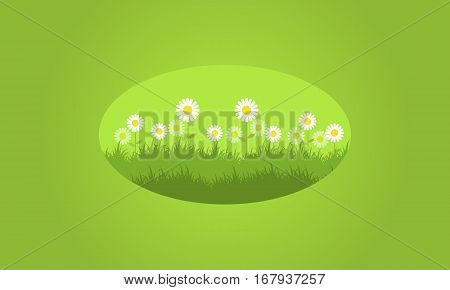 Background of flower spring vector collection stock
