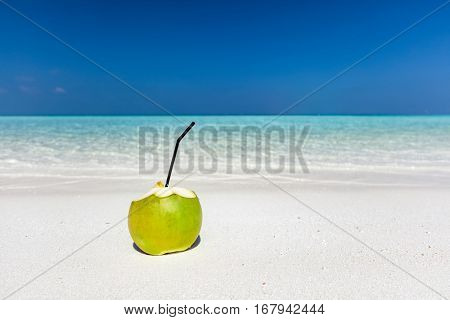 Fresh green coconut with pipe inside, ready to drink. Tropical beach in Maldives, Indian Ocean