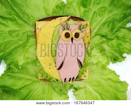 creative sandwich with cheese and salame owl shape