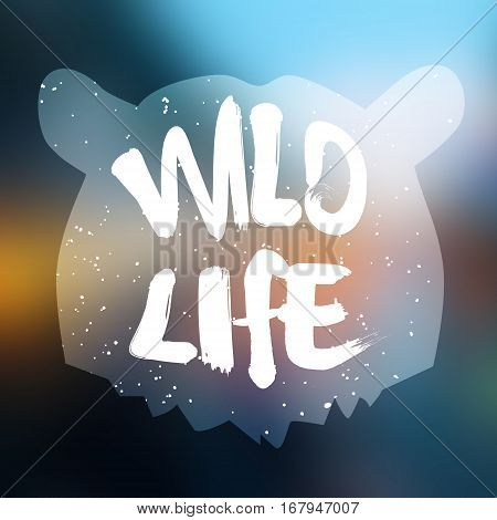 Bear head silhouette with text wild life on blur background. Lettering style. Vector.
