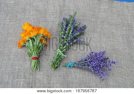 medical herbs marigold lavender and hyssop bunch on linen cloth