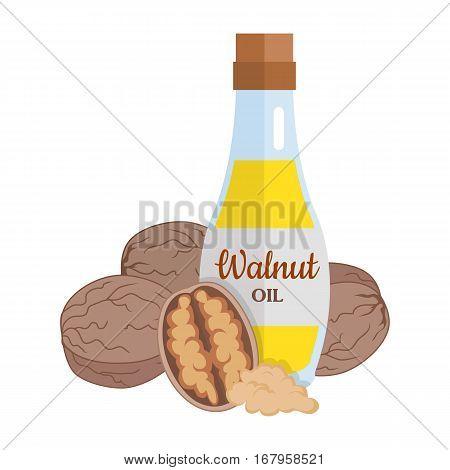 Walnut kernels with walnut oil. Ripe walnut in flat. Walnut butter in glass bottle. Several brown walnut kernels. Healthy vegetarian food. Vector illustration