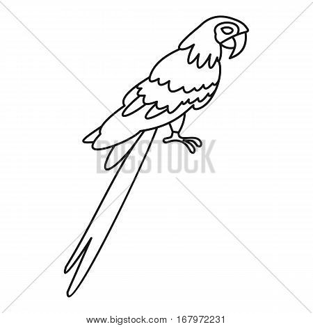 Parrot icon. Outline illustration of parrot vector icon for web