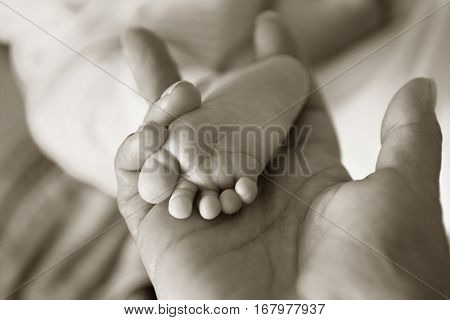 Parent hand hold baby girl legs close up