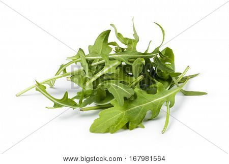 arugula on a white background
