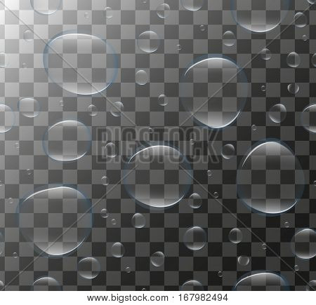 Realistic Transparent water bubbles. 3d set soap bubbles, drop, droplets. Vector illustration