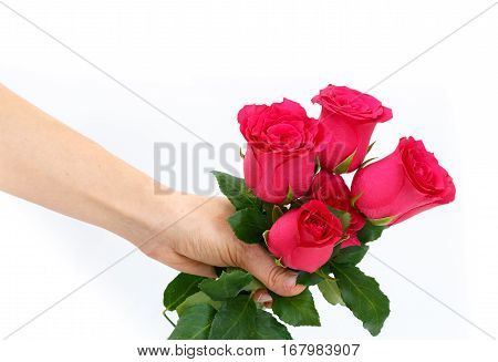 Closeup Of A Hand Holding Red Roses Bouquet, On White Background.