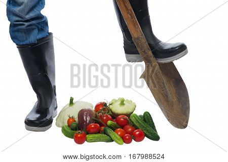 farmer feet on the bottom of the shovel and scattered vegetables