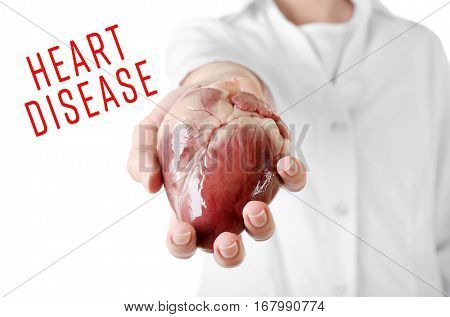 Cardiology and health care concept. Doctor's hand holding heart