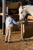 Small girl feeding the horse people diversity series poster