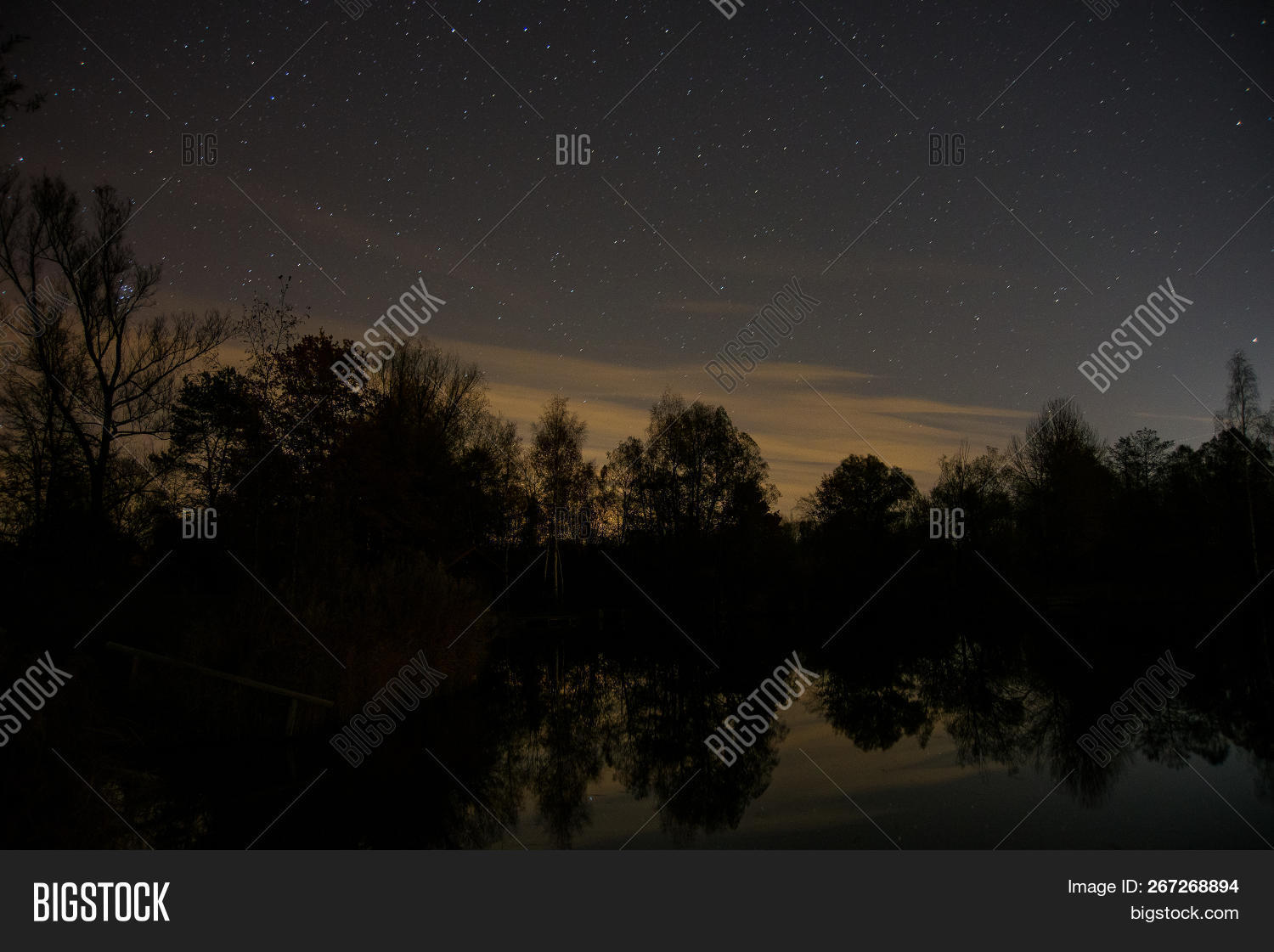 Trees Stars Reflected Image & Photo (Free Trial) | Bigstock