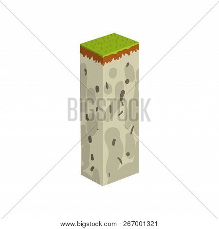 Geological Section, Stratigraphic Column With Cut Of Soil, Grass, Rock Layer Vector Illustration On