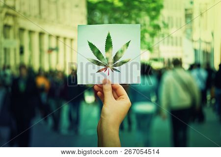 Hand Holding A Paper Sheet With Marijuana Leaf Symbol Over A Crowded Street Background. Cannabis Leg