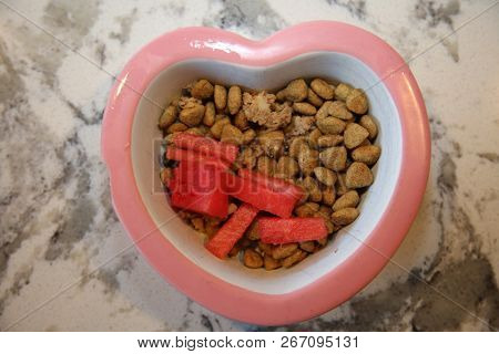Dog food with watermelon and green beans. Fresh Dog Dinner with fruit and veggies. Healthy dog food.