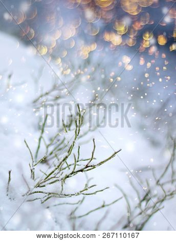 Colorful Flakes First Snow Impression, Beautiful Winter Concept Christmas Snowfall