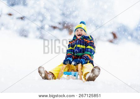 Boy On Sled Ride. Child Sledding. Kid On Sledge