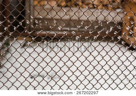 Metal Mesh Closeup. Metal Mesh In The Snow. Grid Texture.